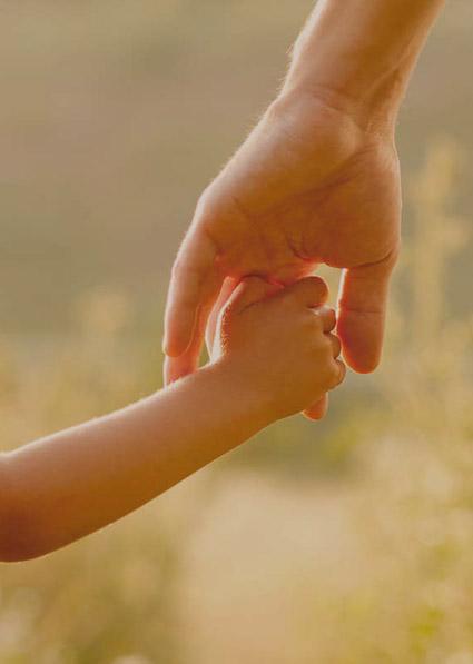 Child Custody Field NSW